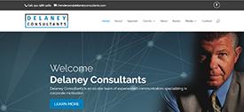 Delaney Consultants